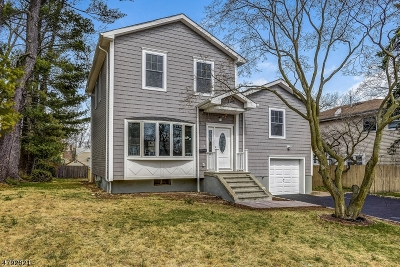 Springfield Twp. Single Family Home For Sale: 166 Henshaw Ave