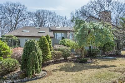 Randolph Twp. Single Family Home For Sale: 5 Pinnacle Pt