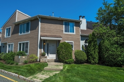 Springfield Twp. Condo/Townhouse For Sale: 3315 Park Place
