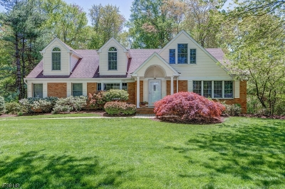 Chatham Twp. Single Family Home For Sale: 19 Joanna Way