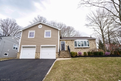 Springfield Twp. Single Family Home For Sale: 52 Garden Oval