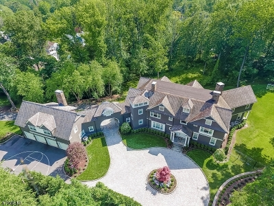 Essex County, Morris County, Union County Single Family Home For Sale: 71 Hillside Ave