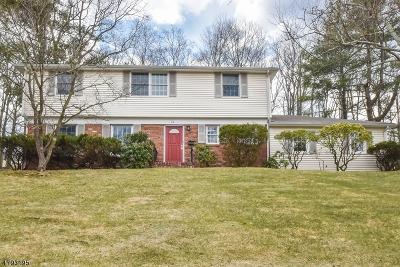New Providence Boro Single Family Home For Sale: 74 Possum Way