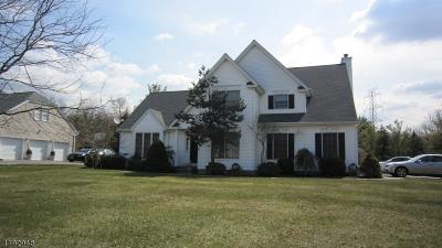 Livingston Twp. Single Family Home For Sale: 34 Burgundy Ct
