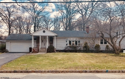Florham Park Boro Single Family Home For Sale: 72 Cathedral Ave