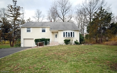 Hanover Twp. Single Family Home For Sale: 28 Adams Dr