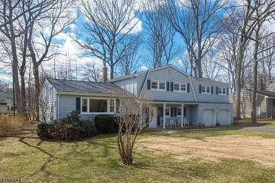 Randolph Twp. Single Family Home For Sale: 5 Chestnut Hill Rd