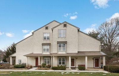 East Brunswick Twp. Condo/Townhouse For Sale: 2703 Commons Way #1