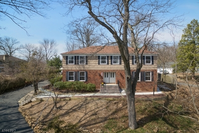 Berkeley Heights Twp. Single Family Home For Sale: 305 Mountain Ave