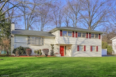 Clark Twp. Single Family Home For Sale: 50 Frances Dr