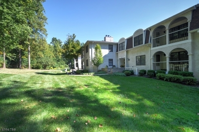 Chatham Twp. Condo/Townhouse For Sale: 17d Heritage Dr #D