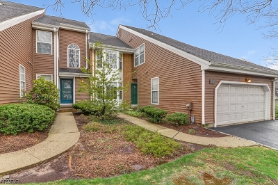 West Orange Twp. Condo/Townhouse For Sale: 291 Araneo Dr