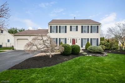 South Brunswick Twp. Single Family Home For Sale: 6 Patricia Way