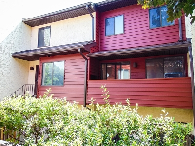 Nutley Twp. Condo/Townhouse For Sale: 103 River Rd #E3