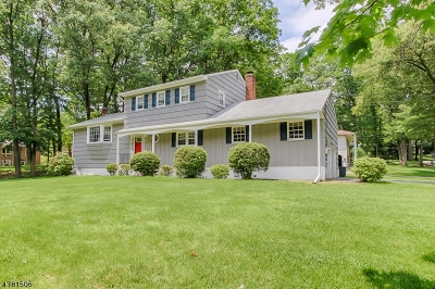 Parsippany-Troy Hills Twp. Single Family Home For Sale: 6 Drumlin Dr