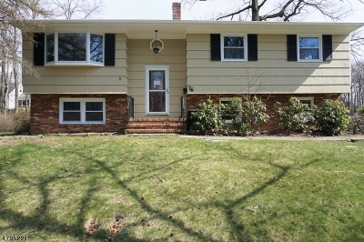 Fanwood Boro Single Family Home For Sale: 76 Kempshall Ter
