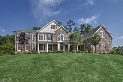 Randolph Twp. Single Family Home For Sale: 7 Skyline Dr