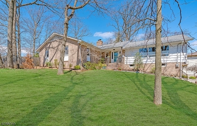 West Orange Twp. Single Family Home For Sale: 9 Rock Spring Rd