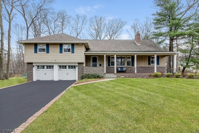 Livingston Twp. Single Family Home For Sale: 52 West Dr