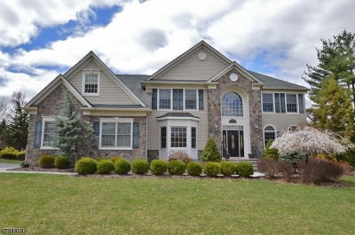 Florham Park Boro Single Family Home For Sale: 233 Brooklake Rd
