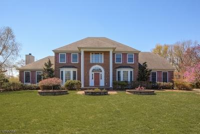 East Brunswick Twp. Single Family Home For Sale: 1 Blue Diamond Hill Ct