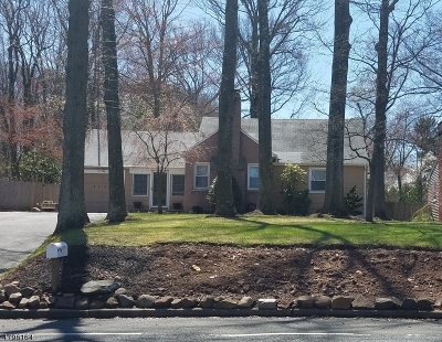 Scotch Plains Twp. Single Family Home For Sale: 1170 Martine Ave
