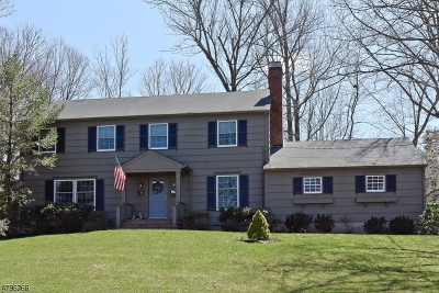 New Providence Boro Single Family Home For Sale: 70 Rose Ave