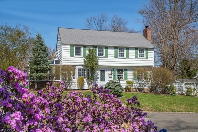 Springfield Twp. Single Family Home For Sale: 128 Short Hills Ave