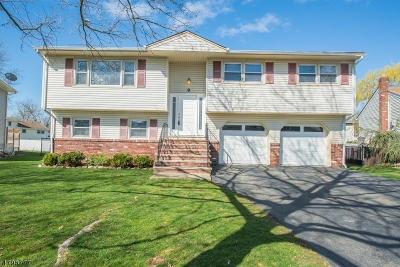 Parsippany-Troy Hills Twp. Single Family Home For Sale: 9 Wolf Pl