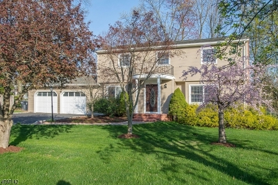 Hanover Twp. Single Family Home For Sale: 60 Addie Ln