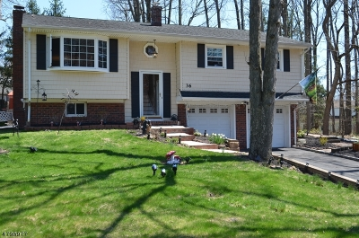 Fanwood Boro Single Family Home For Sale: 36 Gere Pl