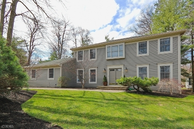 Berkeley Heights Twp. Single Family Home For Sale: 85 Overhill Way