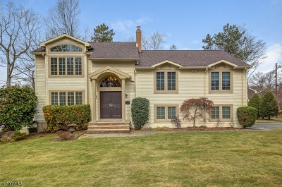 Livingston Twp. Single Family Home For Sale: 63 Havenwood Dr