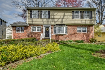 Fanwood Boro Single Family Home For Sale: 113 Midway Ave