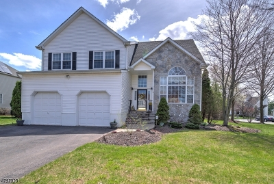 South Brunswick Twp. Single Family Home For Sale: 31 Terrier Pl