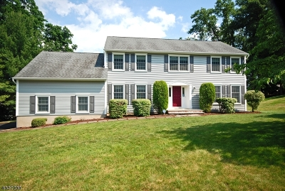 Hanover Twp. Single Family Home For Sale: 14 Larch Rd