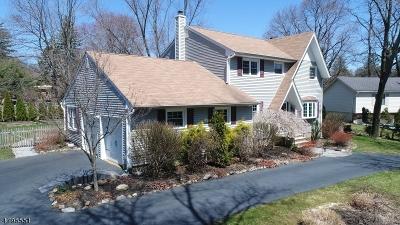 Randolph Twp. Single Family Home For Sale: 3 Quaker Hill Ln