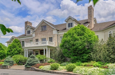Mendham Boro, Mendham Twp. Single Family Home For Sale: 2 Spring Meadow Ln