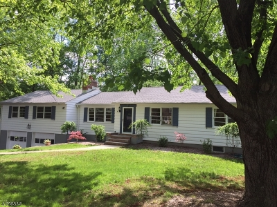 WATCHUNG Single Family Home For Sale: 43 Guinard Dr