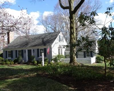 Randolph Twp. Single Family Home For Sale: 102 Shady Ln