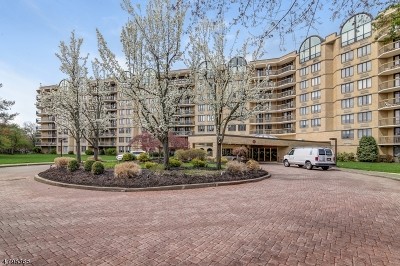 West Orange Twp. Condo/Townhouse For Sale: 10 Smith Manor Blvd #808