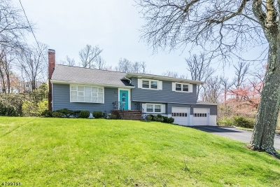 West Orange Twp. Single Family Home For Sale: 38 Aspen Rd