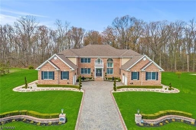 South Brunswick Twp. Single Family Home For Sale: 39 Summit Dr