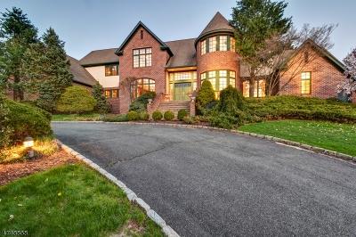 Livingston Twp. Single Family Home For Sale: 83 Chestnut St S
