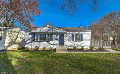 Scotch Plains Twp. Single Family Home For Sale: 1956 Church Ave