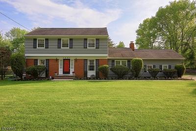 Scotch Plains Twp. Single Family Home For Sale: 1460 Martine Ave