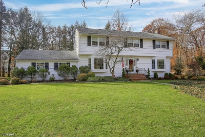 Morris Twp. Single Family Home For Sale: 69 Canfield Rd