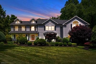 Scotch Plains Twp. Single Family Home For Sale: 10 Blackbirch Rd