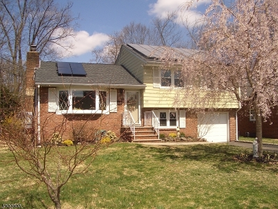 Scotch Plains Twp. Single Family Home For Sale: 327 Haven Ave