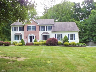 Randolph Twp. Single Family Home For Sale: 6 Diane Ct